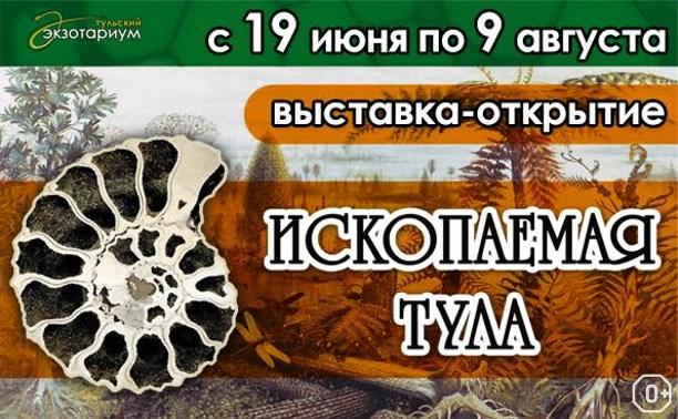 Ископаемая Тула