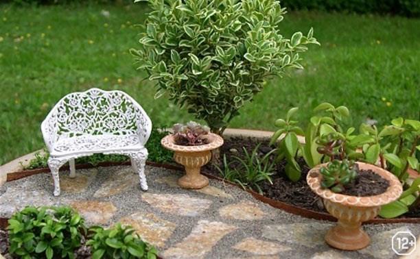 Сад в миниатюре