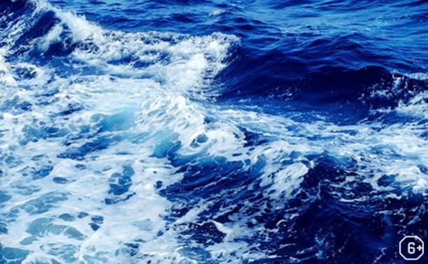 Мастер-класс по живописи «мечты о море»
