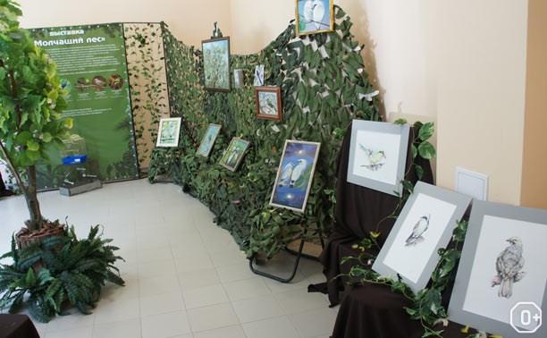Выставка, посвященная акции «Молчащий лес»