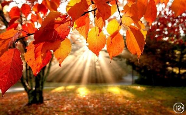 Осень без грусти