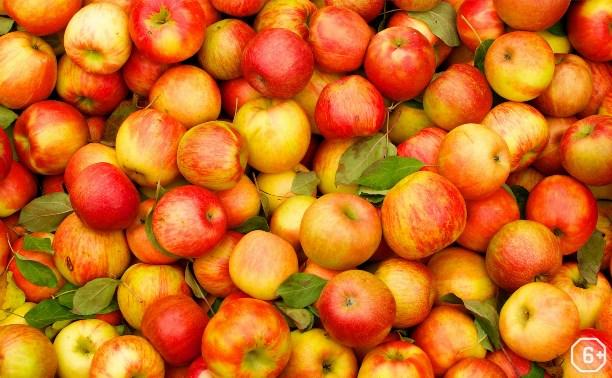 Яблочный Спас у Болотова