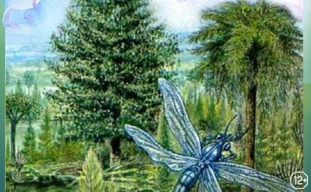 Загадочный карбон: какие растения росли на Тульской земле 340 миллионов лет назад
