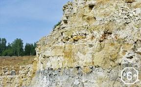Вниз по лестнице, ведущей вверх. Геологическая история в  коллекциях