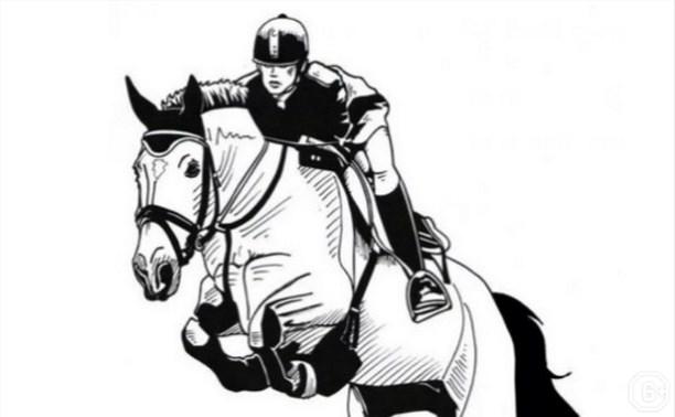 Кубок федерации конного спорта по конкуру
