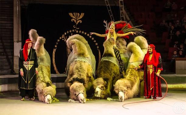 Международный цирк