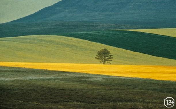 «Фотоувеличение»: «Природа в фотографии»