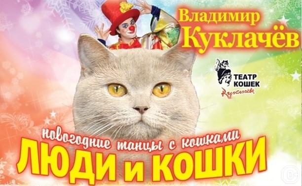 Люди и кошки или Танцы с кошками