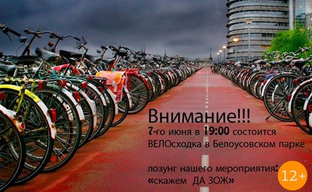 Велосходка в парке