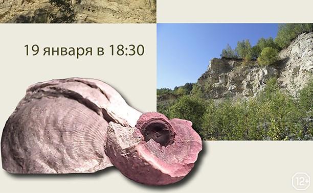 Лекция о геологии и палеонтологии региона