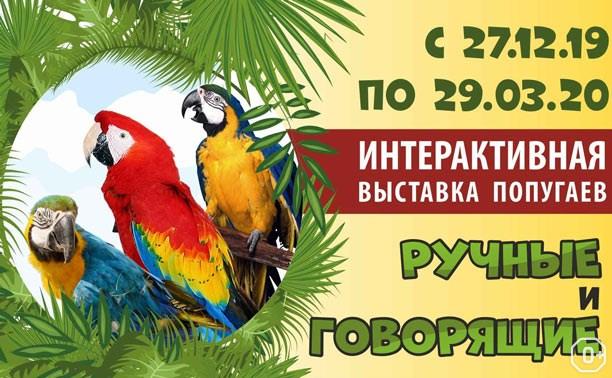 Интерактивная выставка ручных и говорящих попугаев