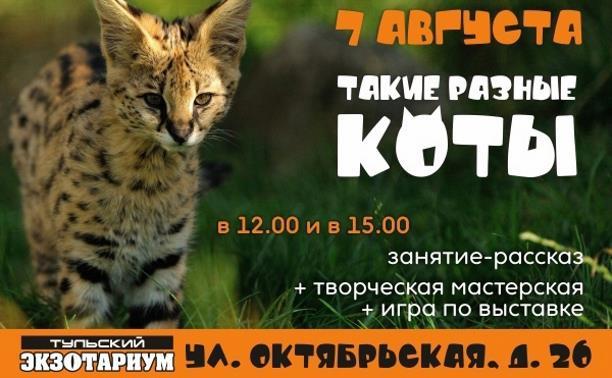 День кошек в Экзотариуме