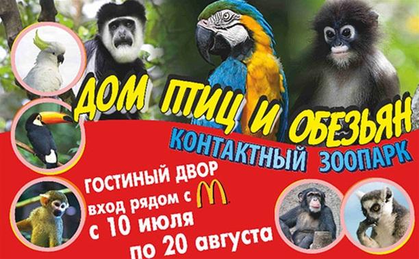 Дом птиц и обезьян