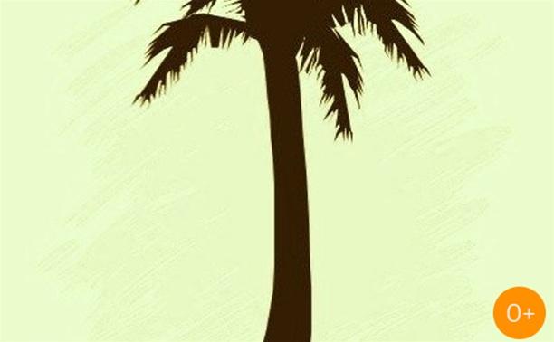 Кот-сейшн от Пальмы-джем клуба