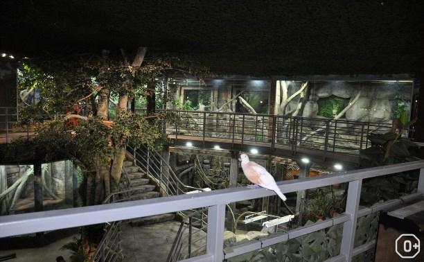 Тульский экзотариум: музей живой природы