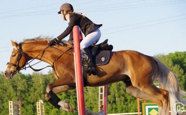 Фестиваль конного спорта