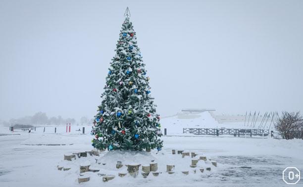 Торжественное открытие главной елки Куликова Поля