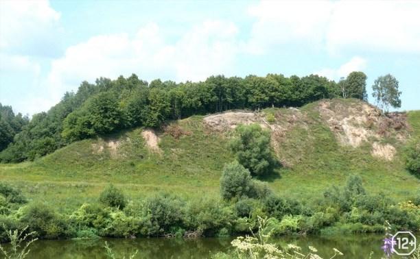 «Жилые стены» и обожженные валы: к истории фортификации эпохи раннего железного века»