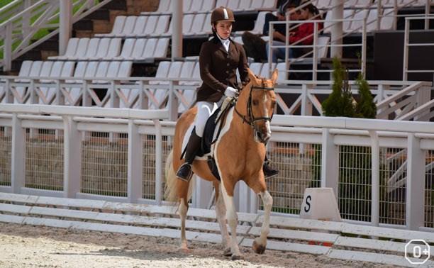 Открытый фестиваль по конному спорту