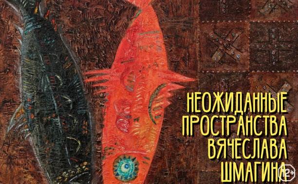 Неожиданные пространства Вячеслава Шмагина
