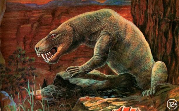 Уникальные палеонтологические находки
