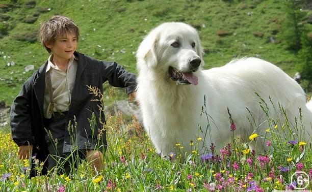 Премьера фильма «Белль и Себастьян: приключения продолжаются»
