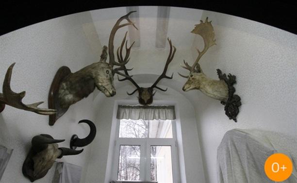Открытие краеведческого музея