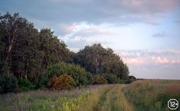 Исторические тропы Куликова поля
