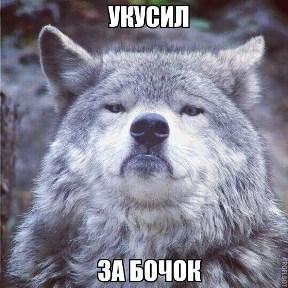Volk177, просто Волк