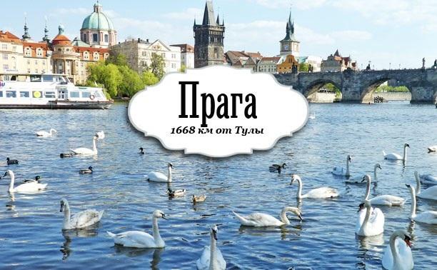 Раздутая Прага, туповатко и пингвины