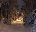 Выбраны лучшие зимние фотографии