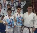 Братья Дежины из г.Щекино стали призерами Межрегионального турнира по каратэ WKC «День Победы»