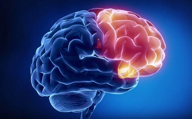 Как просмотр порнографии отражается на мозге
