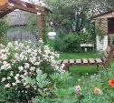 Нарциссы, мускари, розы и сон-трава: у тулячки на даче десятки цветов