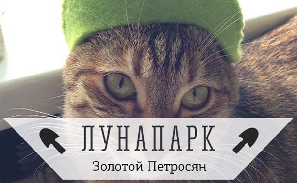 ГлаМУРРРный Котэ!