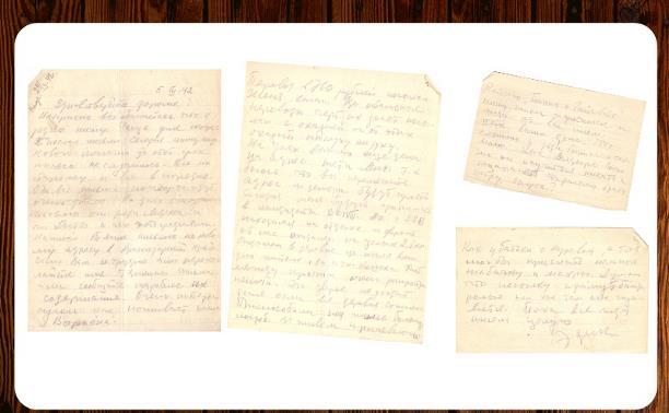 Дневники войны. Письмо Эдуарда Гольдина