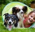 Принимаем на конкурс фото детей с животными
