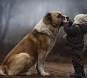Дружба ребенка и собаки: да или нет?