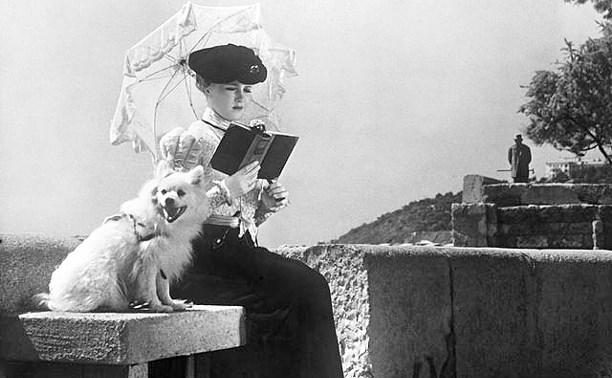 Дама с собачкой: начался приём работ