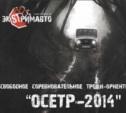 Осетр-2014, традиционное ориентирование