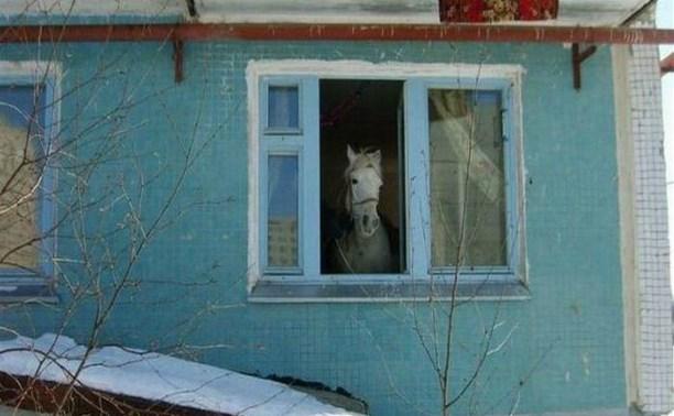 Объявляем конкурс интересных фото, снятых из окна