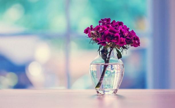 10 способов сохранить цветы в вазе свежими надолго - Блог «Безумный мир» -  MySlo.ru