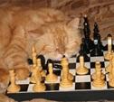 Жизнь кота.