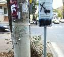 Платные парковки vs. чистый город