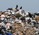 Куда выносить мусор?