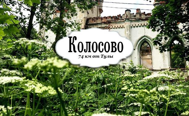 Усадьба в Колосово Алексинского района