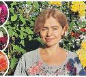Тулячка раскрыла секрет выращивания роскошных роз