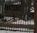 Четверо мужчин зверски избили ученика прямо возле школы