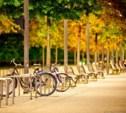 Где можно взять в долгосрочный прокат велосипед или мотик?
