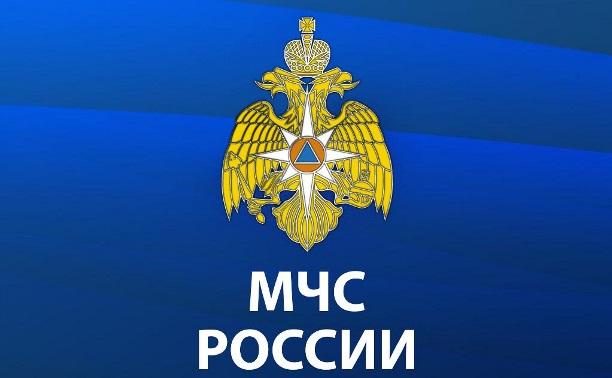 Какие госуслуги оказывает МЧС России по Тульской области?